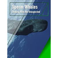Sperm Whales - Dealing With the Unexpected