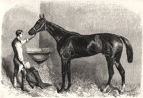 The Goodwood Races. Starke, the winner of the Goodwood Cup. Sussex - 1861 - old print - antique print - vintage print - printed prints of Sussex