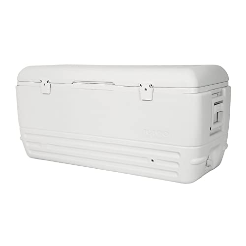 Best Marine Cooler