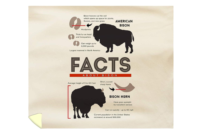 Amazon Lantern Press Facts About Bison 88x104 King Microfiber Duvet Cover Home Kitchen