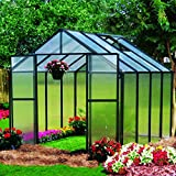 Monticello Greenhouse Premium Package, 8' x 8', Black Finish