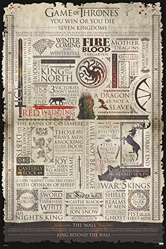 Game of Thrones Infographic Epic Fantasy Action HBO TV Television Show Print (24x36 Unframed Poster)