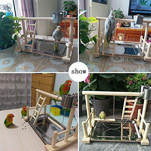 QBLEEV Bird's Stand Playground Climb Wooden Perches (Bird Stand(14.4 L 9 W9.7 H))