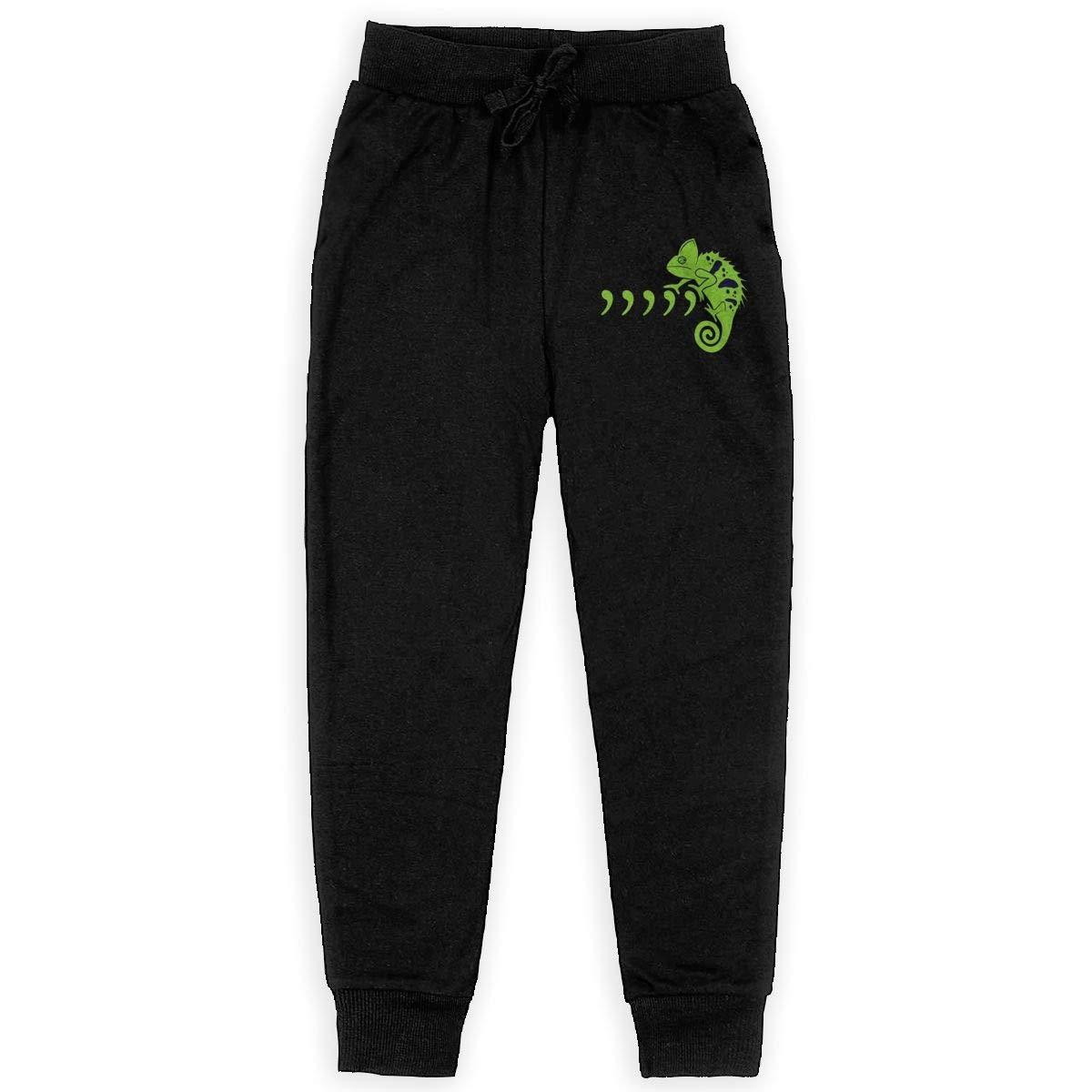 Dunpaiaa Commachameleon Fullpic Artwork Boys Sweatpants,Joggers Sport Training Pants Trousers Black
