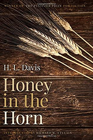 book cover of Honey In The Horn
