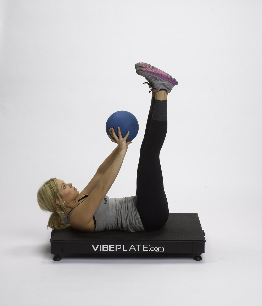 VibePlate 2440 - Whole Body Vibration Machine - Made in USA by VibePlate