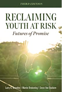 The Problems Of Youth & Some Solutions! (The Book Of Goodness Series 13)