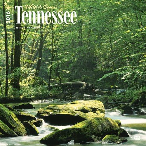 Tennessee Wild Scenic 2016 Square 12x12 Epub