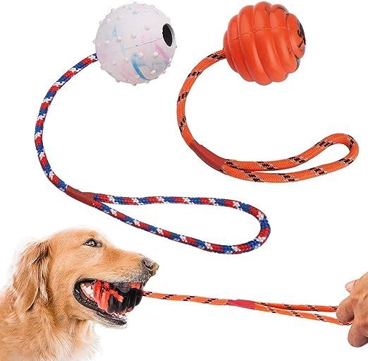 PrimePets - Pelota para Perro con Cuerda, 2 Unidades, de Goma ...