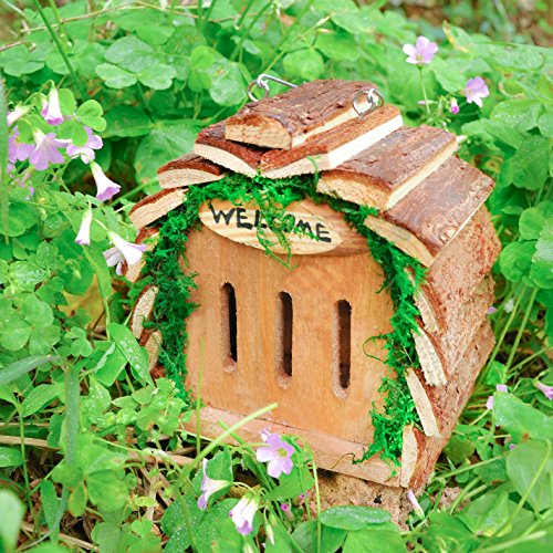 The 8 best butterfly houses