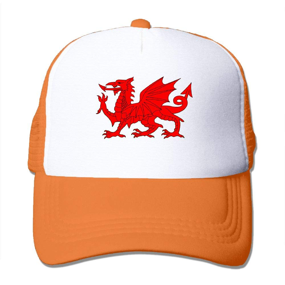 JimHappy Welsh Flag Dragon Mesh CapAdjustable Back Mesh Cap for Men and Women
