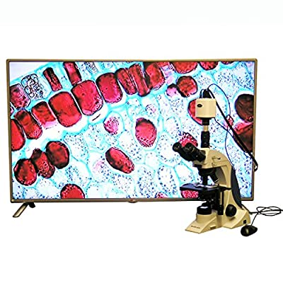 100X-1000X Plan Infinity Kohler Laboratory Research Microscope with HDMI Camera & HD Monitor