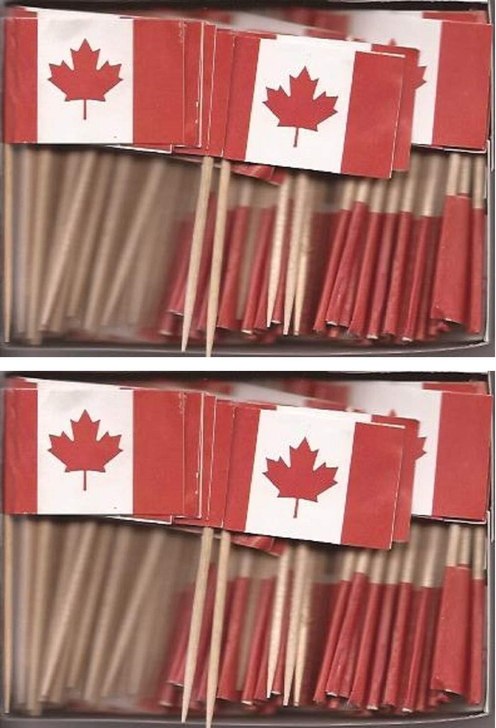 100 Miniature Canada Toothpick Flags, Small Mini Canadian Flag Cupcake Toothpicks or Cocktail Sticks & Picks (1 Box)