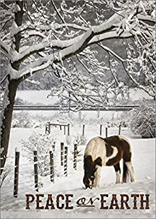 Amazon deluxe willow tree greeting card quietly garden brown and white horse in snow lori deiter lpg country box of 18 christmas m4hsunfo