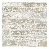 York Wallcoverings RB4304SMP Risky Business Up the Wall 8 X 10 Wallpaper Memo Sample