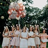 60 Pack Dandy Decor Rose Gold Balloons + Confetti