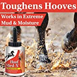 Happy Horse Hoof Med-X, Toughens Sore Hooves with