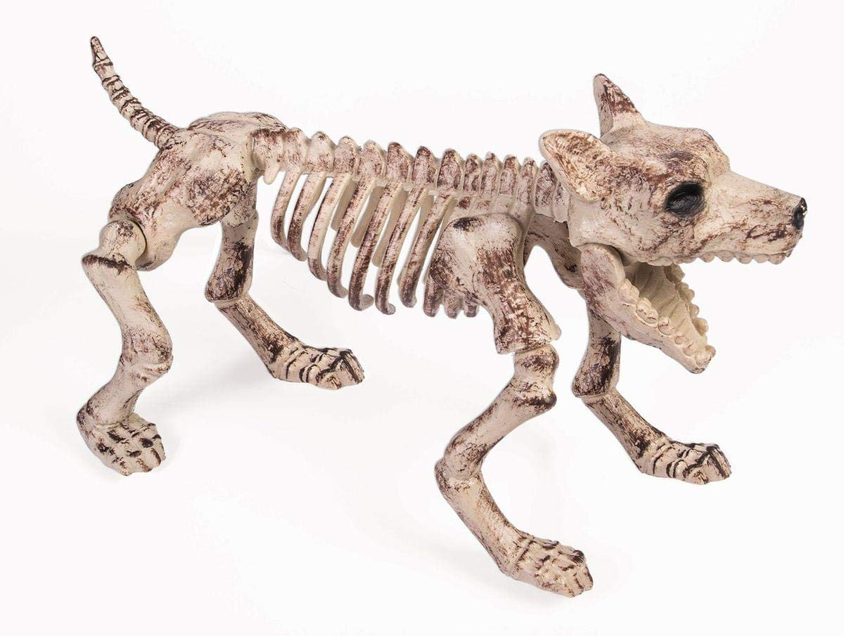 Forum Novelties Small Bone Skeleton Dog, Cream