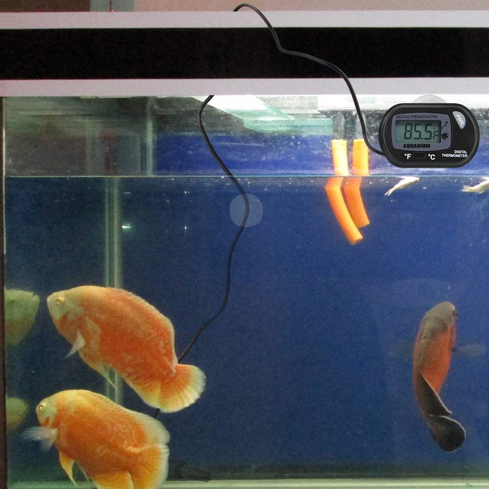CODIRATO 2PCS Acuario Termómetro LCD Plástico ABS Digital Termómetro de Agua con Ventosa Acuario Marino Temperatura para Fish Tank Acuario Marino (Negro): ...