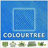 ColourTree 20' x 20' x 20' Sun Shade Sail Canopy