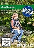 Junghunde: Die Basiskommunikation nach HundeTeamSchule®