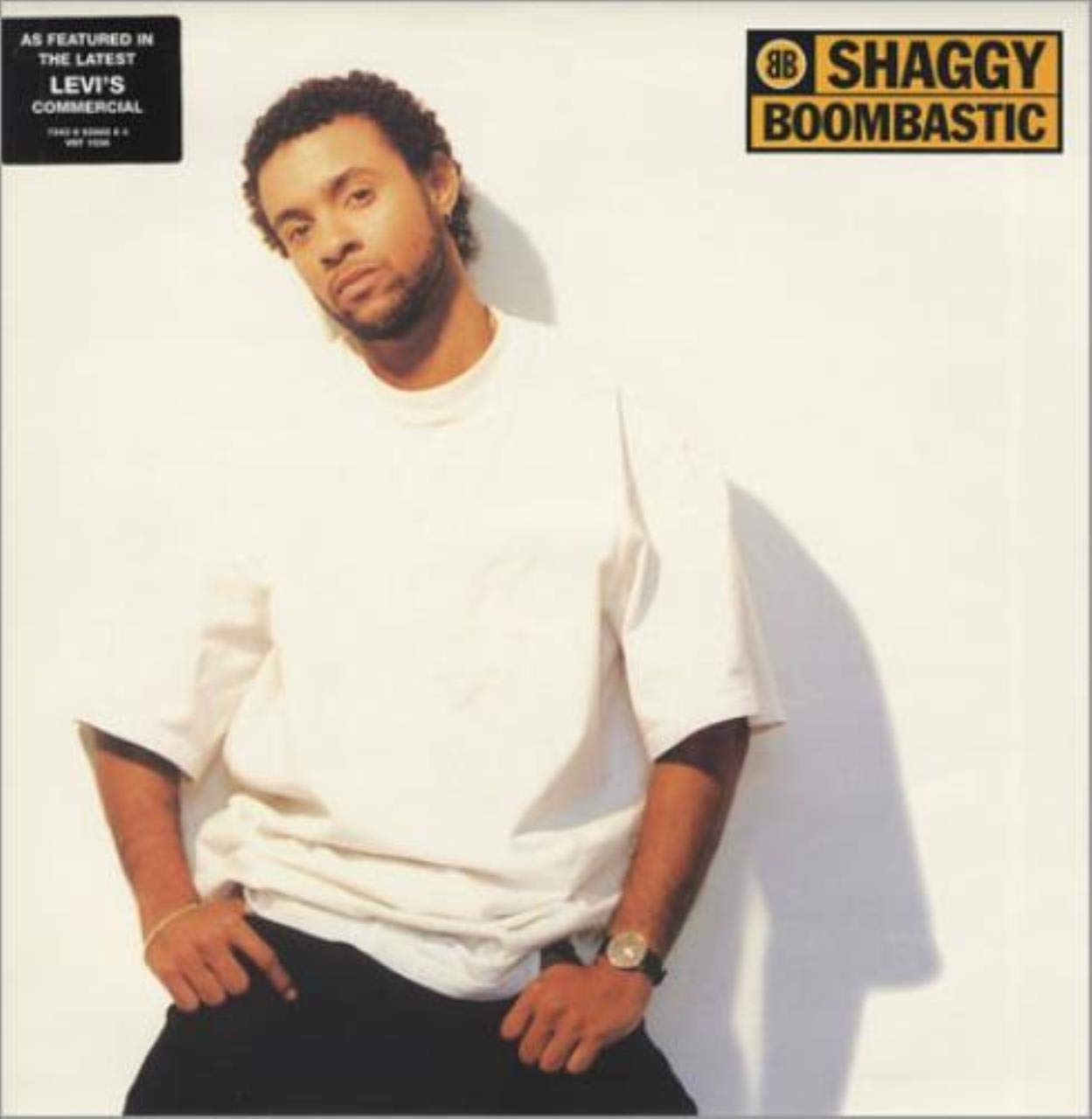 Shaggy / Boombastic