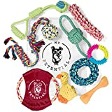 My Petential Dog Toy Gift Set (10 Pack) - Fun Rope, Rubber and Squeaky Pet Toy - Interactive Chew Toys for Happy Dogs - Good for Teething, Tug of War and Keeps them Busy
