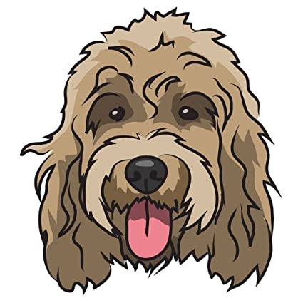 Amazon Com Signmission Cockapoo Decal Indoor Outdoor Dog Lover