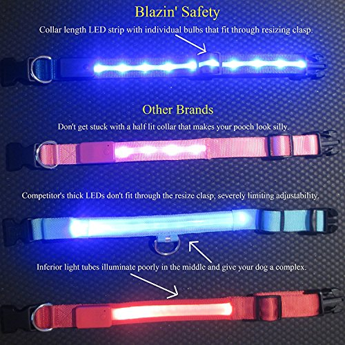 Image of Blazin' Safety LED Dog Collar – USB Rechargeable with Water Resistant Flashing Light – XSmall Black