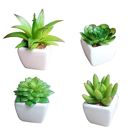 Amazoncom Set Of 4 Small Artificial Succulent Plants In Mini