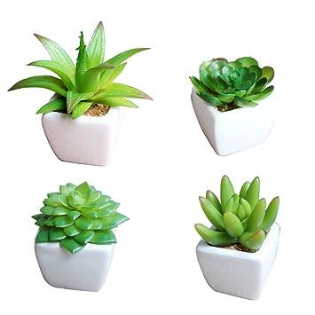 Amazon.com - Small Artificial Succulent Plants in Mini Modern White ...
