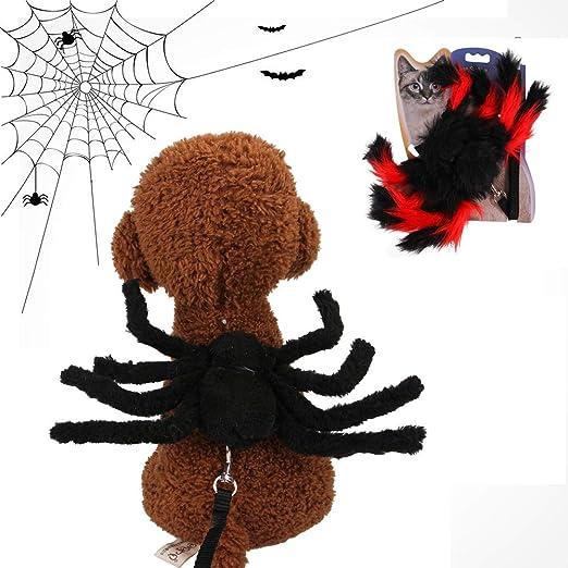 FESTNIGHT - Correa para Perros, Disfraz de Halloween con araña de ...
