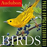 Audubon Birds Color Page-A-Day Desk Calendar 2019 [6'' x 6'' Inches]