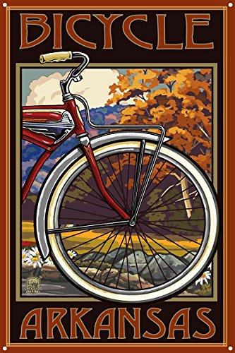 Arkansas Metal Art Print by Paul A. Lanquist (12