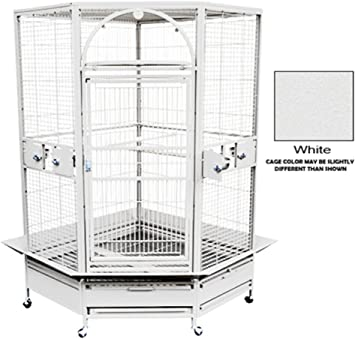 Amazon.com: Kings Jaulas GC 14022 esquina Parrot Cage Bird ...