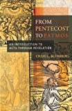 From Pentecost to Patmos, Craig L. Blomberg, 0805432485