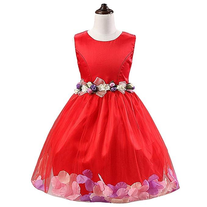 Happy Cherry - Falda Tutú Niñas Bebés para Boda Bautizo Vestido de Fiesta Ceremonia de Flores Encaje sin Mangas Cuello Redondo Falda Princesa Infantil ...