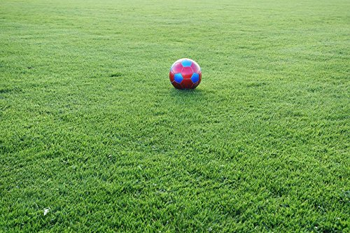 Laminated Poster: Football Sports Ground Ball Football Pitch Sport Rush Ball Sports World Championship