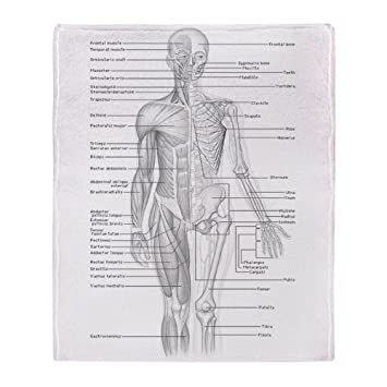Hell – Human Anatomie Diagramm – weicher Fleece Überwurf Decke, 127 ...