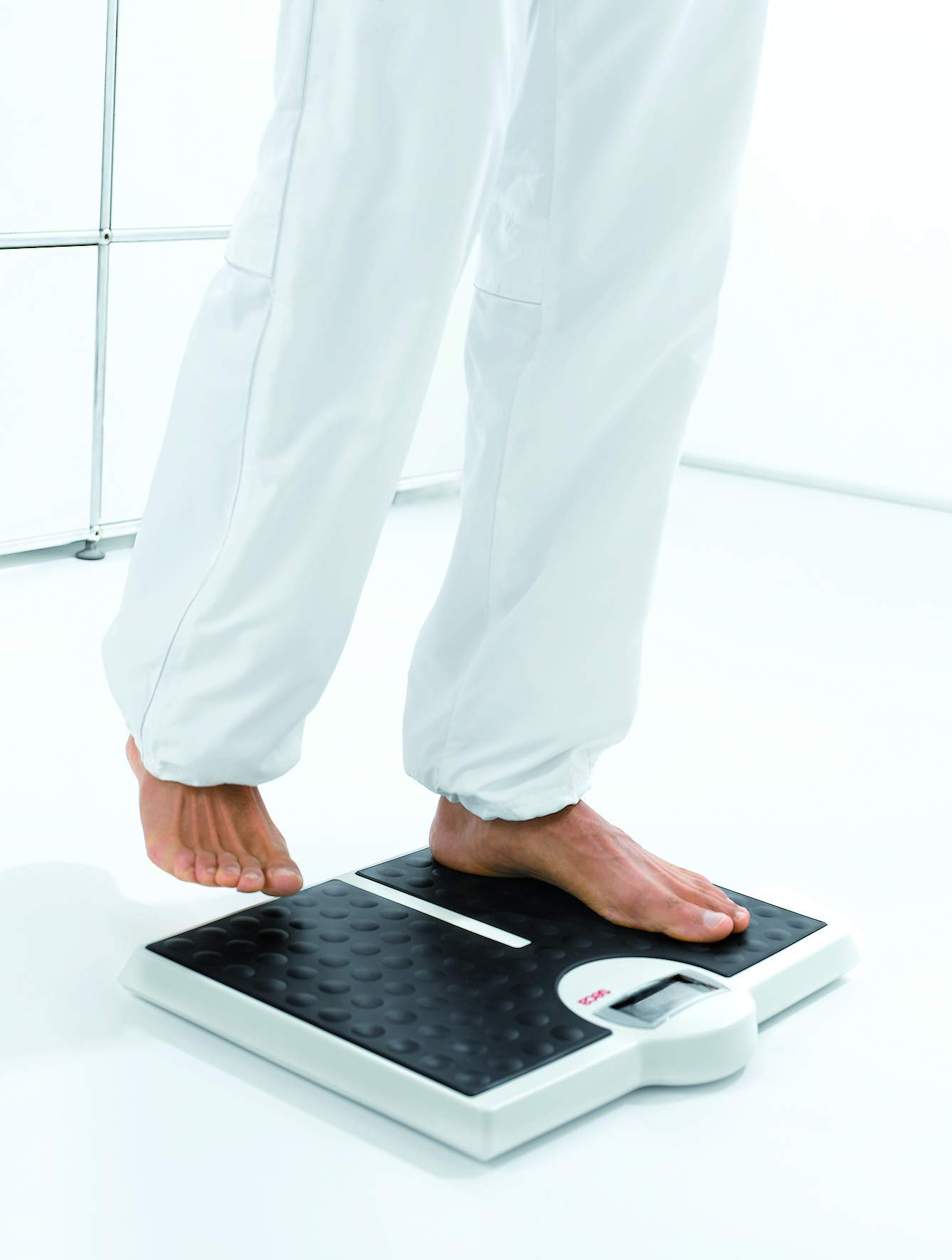 seca 813 High Capacity Digital Flat Scale for Individual Patient Use. by seca
