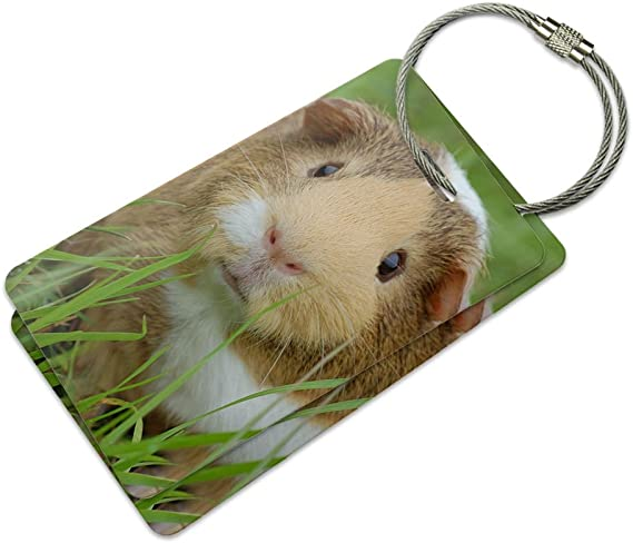 2 Pack Luggage Tags Guinea Pig Cruise Luggage Tag For Travel Tags Accessories