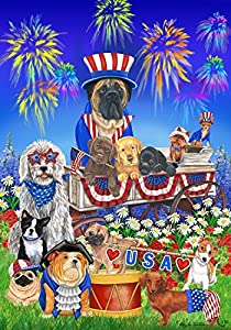 Patriotic USA Firework Star Stripes Dog House Flag by ISSISLEN Lab.