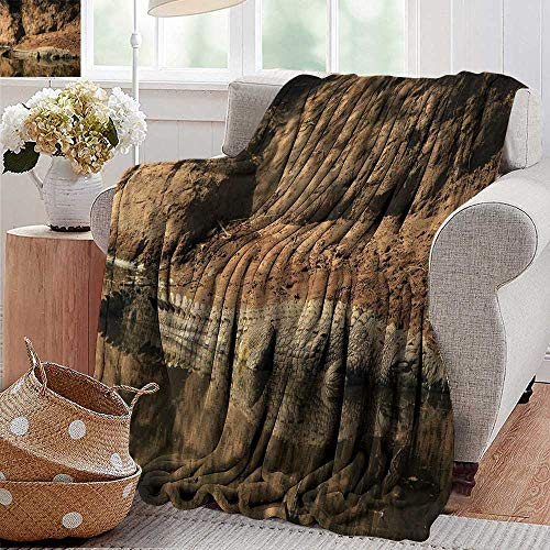 - PearlRolan Throw Blanket,Africa,Nile Crocodile Swimming in The River Rock Cliffs Tanzania Hunter Geography Print,Brown Tan,300GSM,Super Soft and Warm,Durable Blanket 50