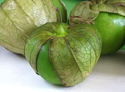 Tomatillo Verde - Makes GREAT Salsa!!, Moles!!, Sauces!