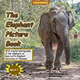 The Elephant Picture Book