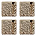 Lunarable Western Coaster Set of Four, Old Cowboy Hat and Authentic Lariat Lasso on Fence in a Ranch Field Western Photo Print, Square Hardboard Gloss Coasters for Drinks, Sepia