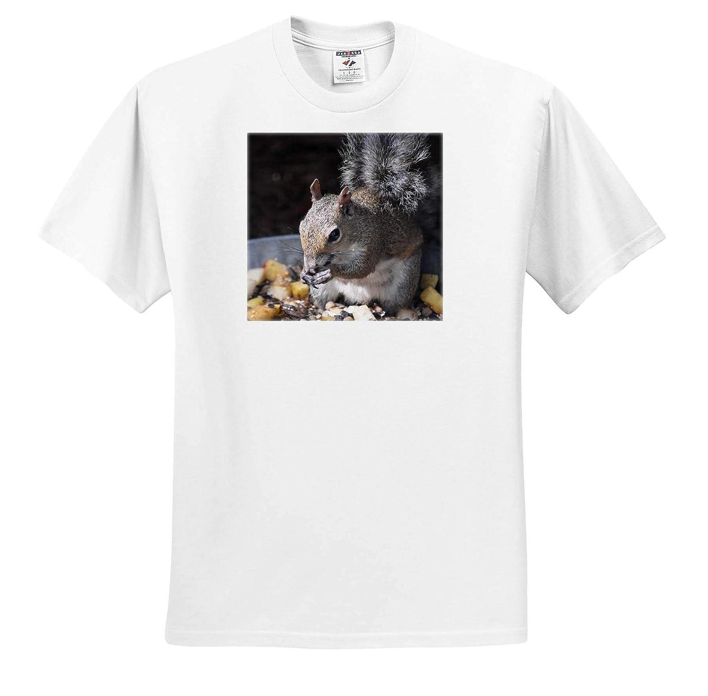 T-Shirts Squirrel Eating Seeds Out of pan 3dRose Susans Zoo Crew Animal