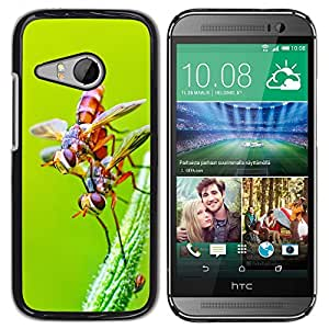 Super Stella Slim PC Hard Case Cover Skin Armor Shell Protection // M00103820 Fly Insects Pair Chennai India // HTC One Mini 2 / M8 MINI / (Not Fits M8)