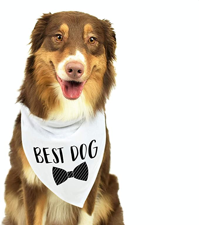 Dog Bandana//Engagement Announcement Props Dog Gifts- Gift for Dog Lover I Love Her First Dog Wedding Bandana Dog Wedding Bandana Pet Scarf Bibs Accessories for Dog Wedding Photo Prop