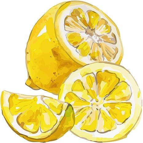 Wandtattoo Kuche Obst Gemuse Wandtattoo Tolles Zitronen Motiv Mit Kraftigem Gel Amazon De Baumarkt